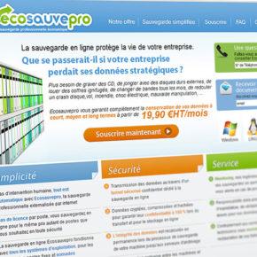 Ecosauvepro